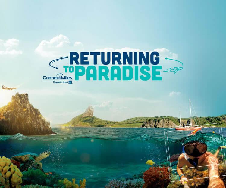 Returning to Paradise